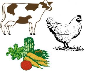 beef-chick-veg